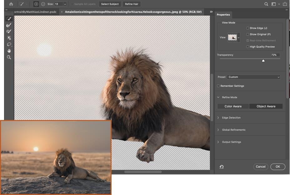 Adobe Photoshop Object Aware Refine Mode