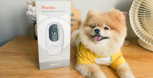 Pawbo⁺ Interactive Pet Camera