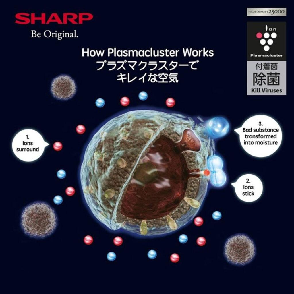 How Plasmacluster Works